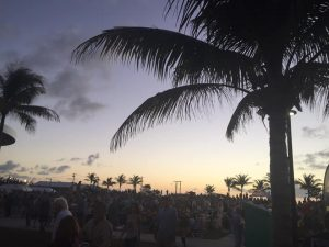 Key West Henna Artist Willie Nelson Concert  with Jennifer Montgomery of CrazyFaces Face Painting and Body Art Philadelphia , Miami, Key West  610.764.0853